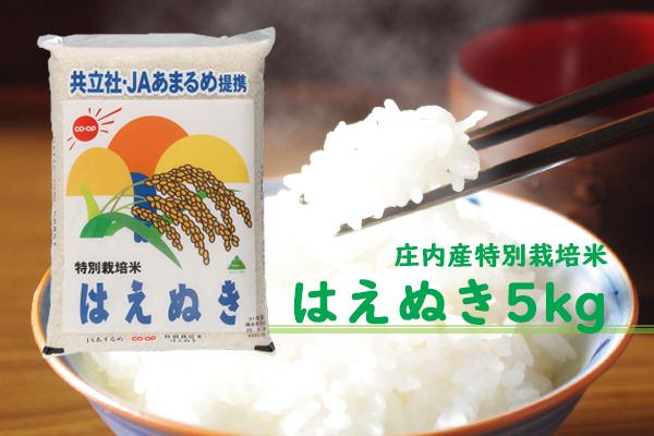 庄内町余目産 特別栽培米はえぬき5kg