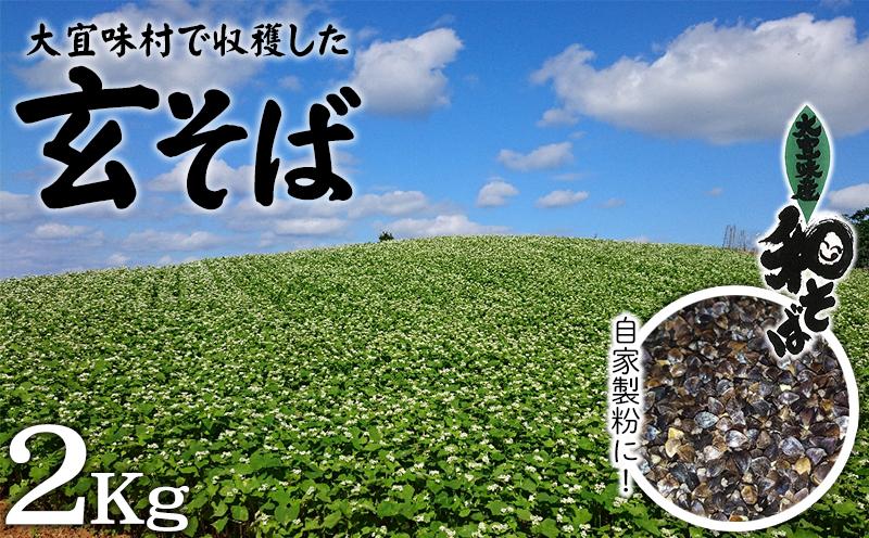 大宜味村で収穫した「玄そば」2Kg 自家製粉に!