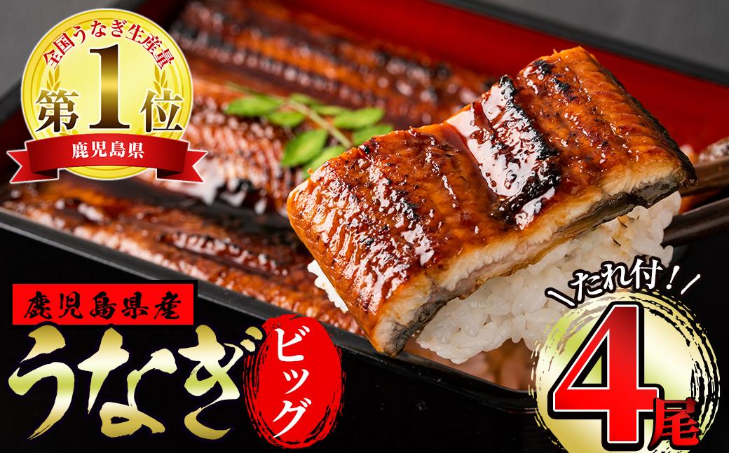 【28776】東串良町のうなぎ蒲焼ビッグサイズ(200g以上×4尾・タレ、山椒付)【アクアおおすみ】