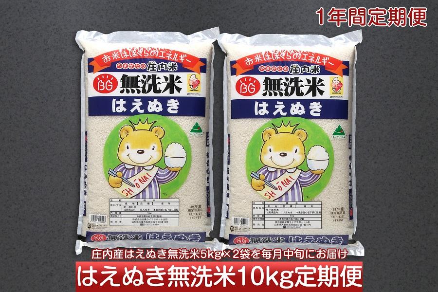 庄内米 定期便 はえぬき 無洗米 10kg×12回 120kg