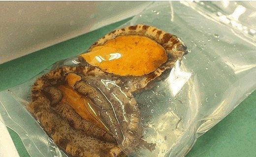 B120:淡路島産天然蒸しアワビ2~4個(解凍)