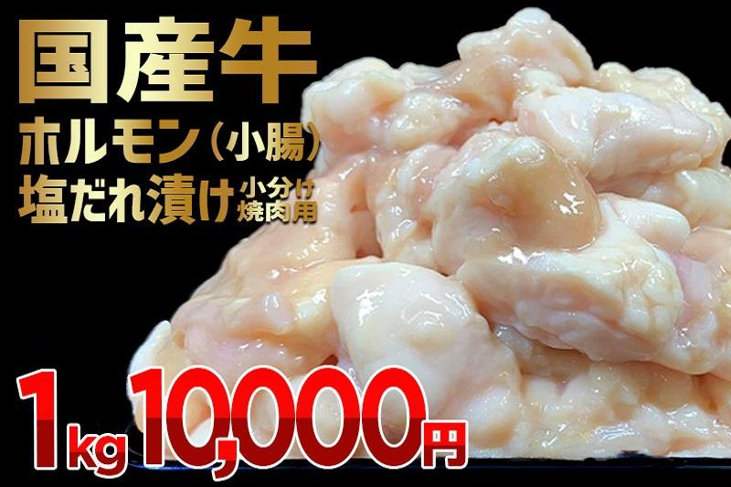 010B504 国産牛ホルモン(小腸)塩だれ漬け 小分け焼肉用 1kg