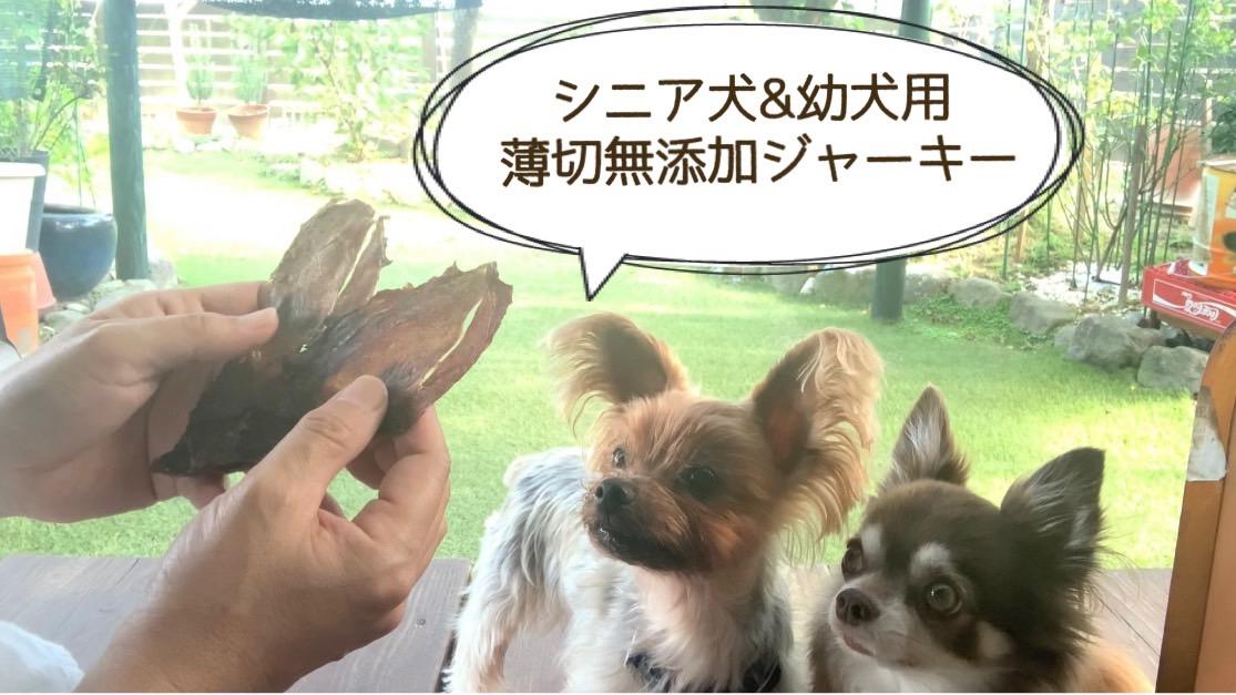 FB036_シニア犬&幼犬用の無添加おやつ☆固すぎない天然いのししジャーキー4個
