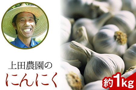 『上田農園』のにんにく約1kg 熊本県玉名郡玉東町『上田農園』にんにく《7月上旬-9月中旬頃より順次出荷》