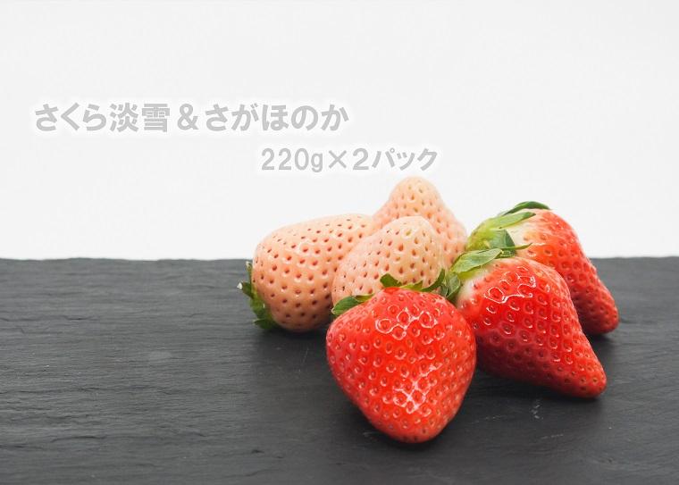 FA008_佐賀県産 さくら淡雪&さがほのか 220g×2パック【12月15日~4月20日発送】