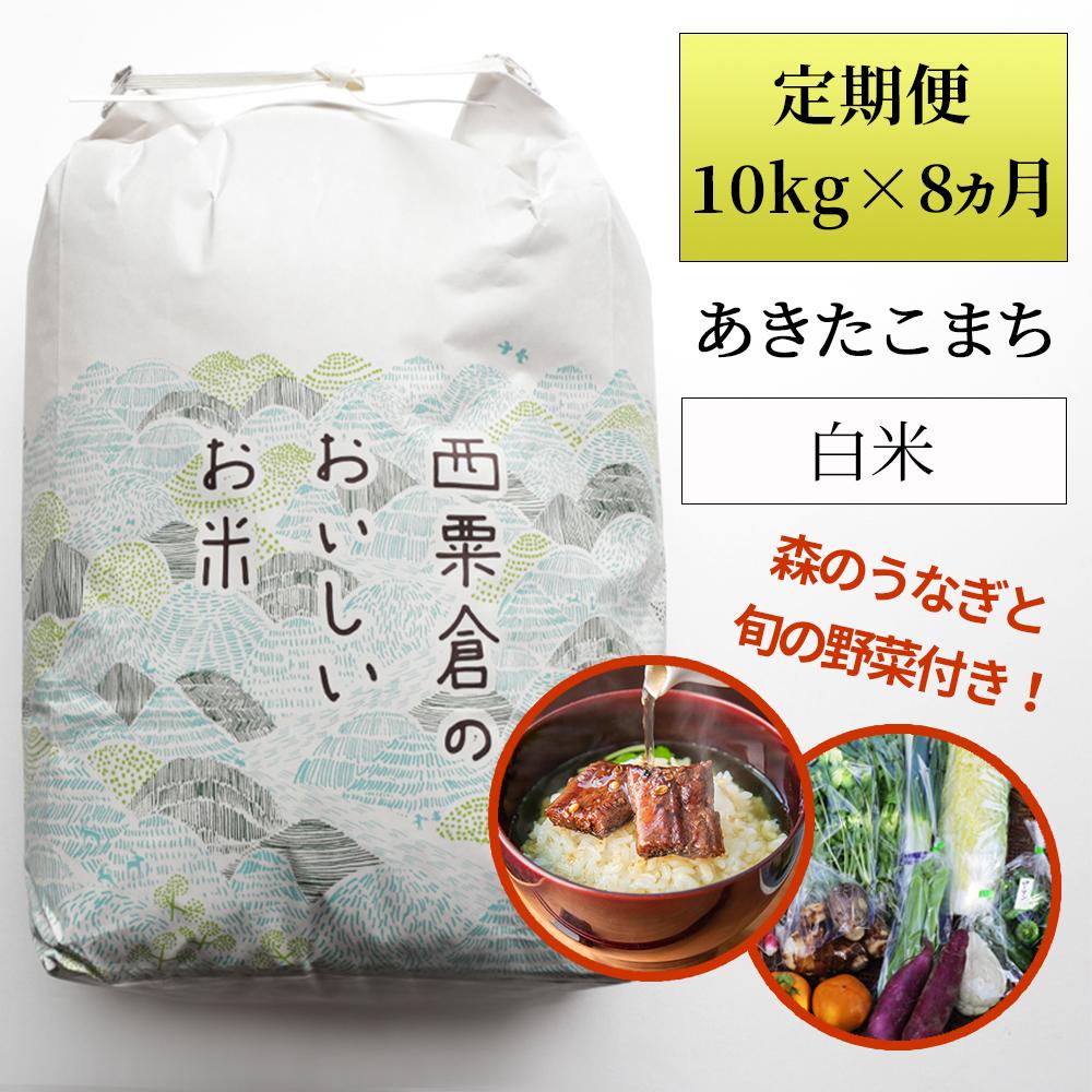 Wp1<ふるプレ限定>定期便 あわくら源流米  あきたこまち白米10kg×8回