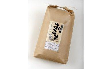 【新米】【輪島のお米】奥能登コシヒカリ10kg(玄米)