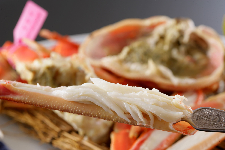 日本海産 タグ付きゆで松葉かに大サイズ2匹