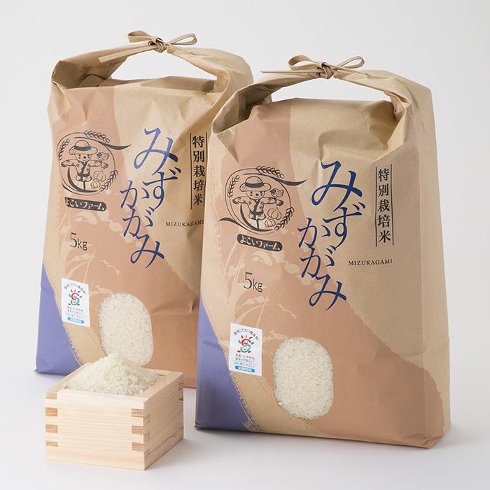 【C-537】よこいファーム 特別栽培米みずかがみA [高島屋選定品]