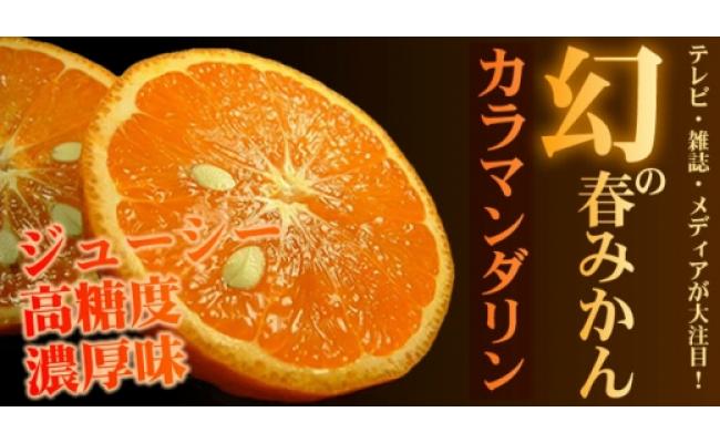 V6148_和歌山県有田産春みかんカラマンダリン 約5kg