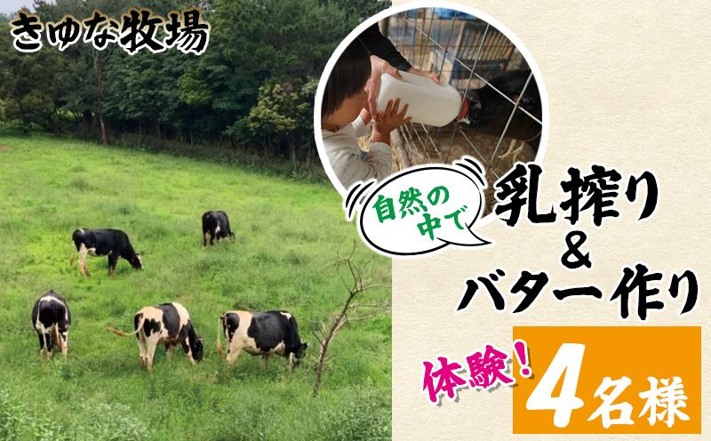 自然の中で乳搾り&バター作り体験!きゆな牧場(4名様)