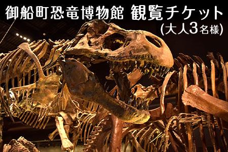 熊本県御船町 御船町恐竜博物館観覧チケット(大人3名様) 御船町恐竜博物館《30日以内に順次出荷(土日祝除く)》