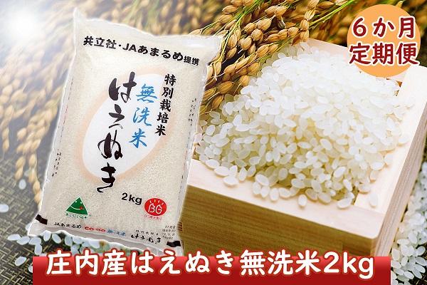 <9月開始>庄内米6か月定期便!特別栽培米はえぬき無洗米2kg(入金期限:2021.8.25)