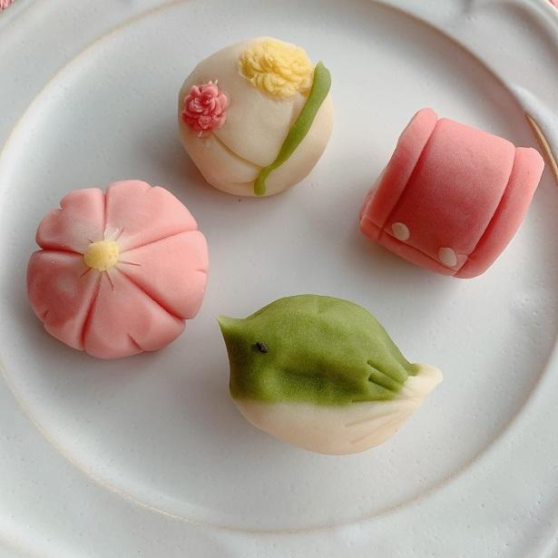 D-219 ナチュラル和菓子体験キット(チョコ餡&こしあん)