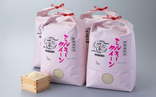 【C-549】よこいファーム 特別栽培米ミルキークイーン20㎏コース(頒布会6カ月)[高島屋選定品]