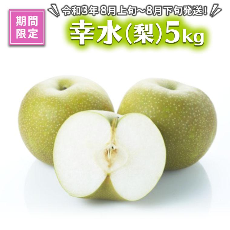 【期間限定】幸水(梨)5kg(令和3年8月上旬~8月下旬発送)[AE008ci]