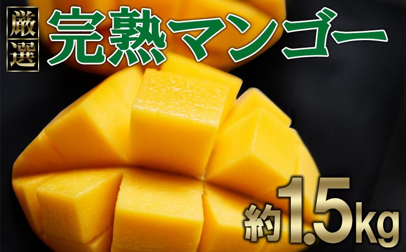 【ヤエセフーズ】厳選!完熟マンゴー約1.5kg
