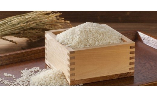 CZ05:淡路島のお米 こしひかり(10kg)