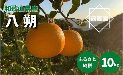 BL6010_【産地直送】和歌山県産 八朔 10kg(M~3Lサイズ)