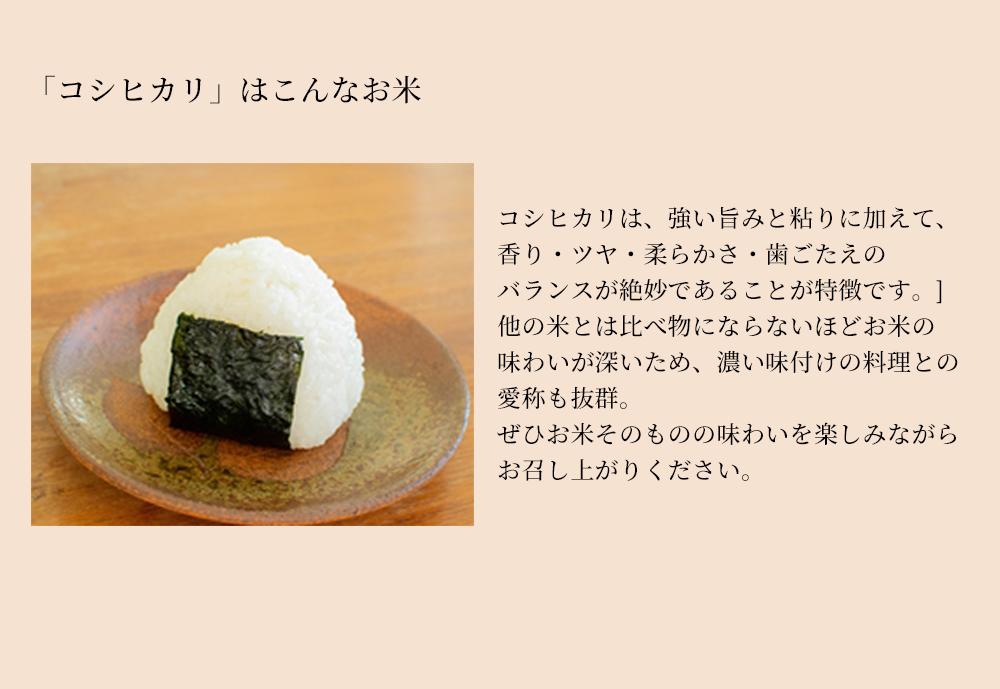 komekome006_koshi.jpg