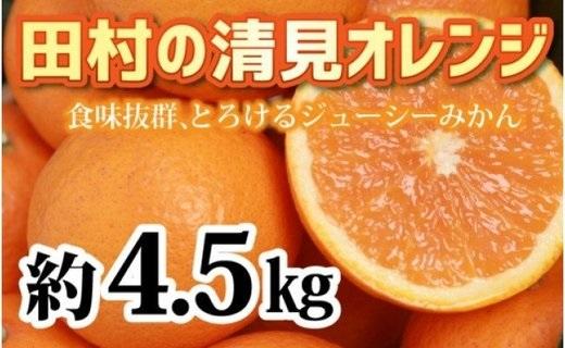 ZA94011_【先行予約】人気の田村の清見オレンジ 約4.5kg 大玉2L~4L