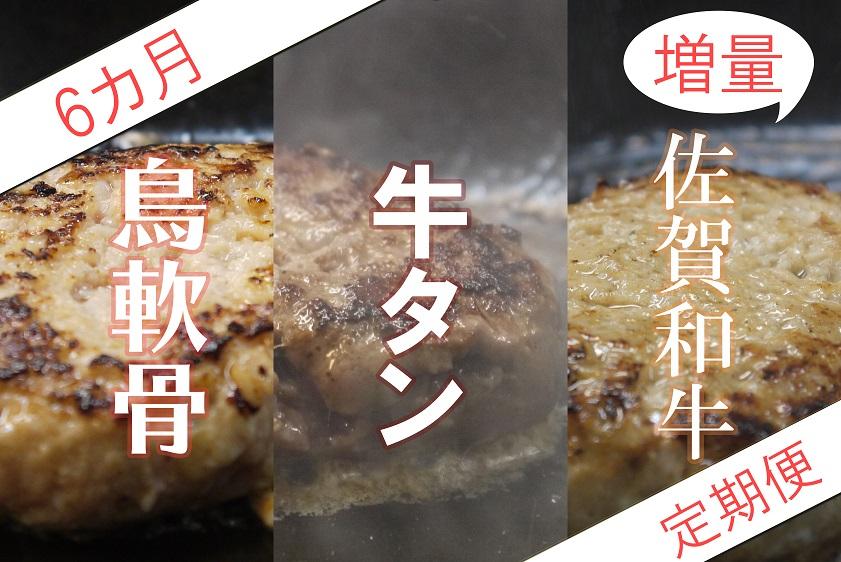 DI028 _【6か月定期便】佐賀県の魅力が詰まったハンバーグ定期便【増量バージョン】