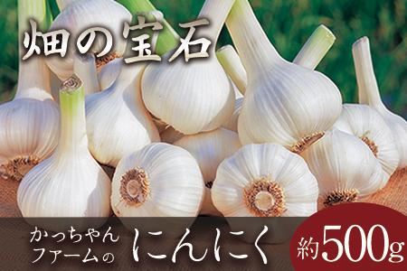 熊本県玉東町産『かっちゃんファーム』のにんにく 約500g《6月上旬-8月中旬頃より順次出荷》
