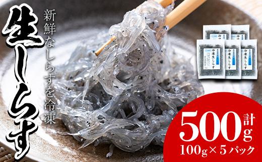 【11516】鹿児島県産生しらす(冷凍)計500g(100g×5パック)獲れたてしらすを急速冷凍!鮮度抜群なしらすをご家庭で気軽に!【東串良町漁業協同組合】