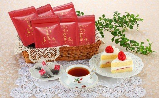 【A-402】八女星野産和紅茶10P入×6袋