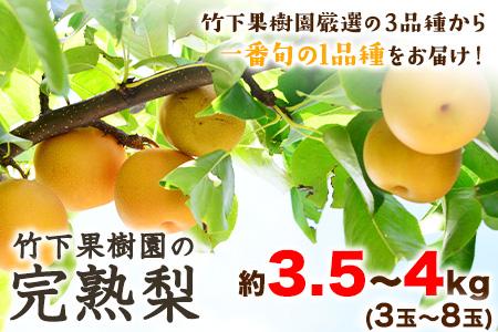竹下果樹園の完熟梨 (あきづき・甘太・新高) 約3.5kg~4kg (3~8玉)《9月上旬-10月中旬頃より順次出荷》
