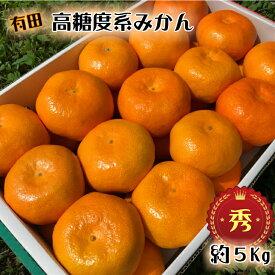 BD005_12月発送 高糖度系 有田 みかん 約5kg  秀品 M~Lサイズ