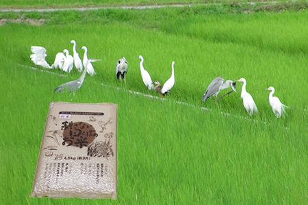 【2622-0122】【新米】【定期便】(6か月連続お届け)無農薬栽培 コシヒカリ 白米【2021年9月中旬以降配送】