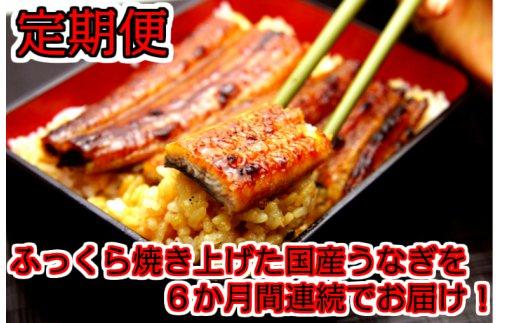 265.【定期便】国産うなぎ蒲焼大サイズ2本セット(6か月お届け)
