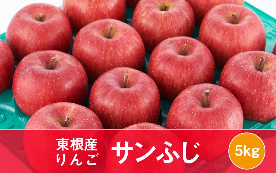 りんご「サンふじ」5kg JA提供(2021年11月下旬~12月中旬送付) P-1542