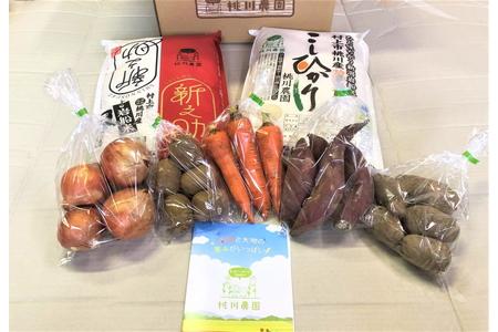 B4071 季節のお野菜と岩船米のセット!