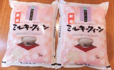 【2年産】近江米ミルキークイーン【10㎏(5kg×2袋)】【T030SM】