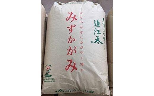 新米【令和3年産】 環境こだわり米「みずかがみ」玄米【30㎏×1袋】【K073SM】