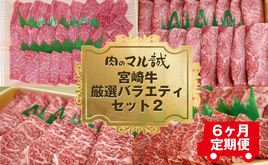 【期間限定】【6ヶ月定期便】宮崎牛厳選バラエティセット2(H014)