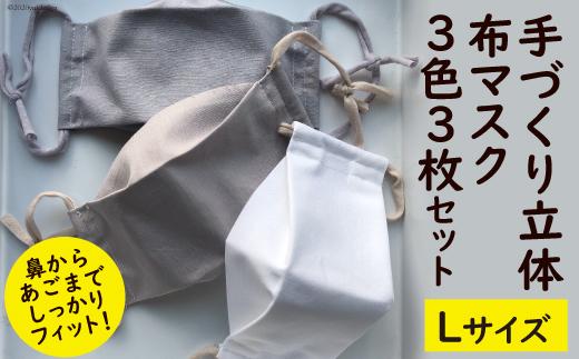 手作り立体布マスク 3色3枚セット(Lサイズ)