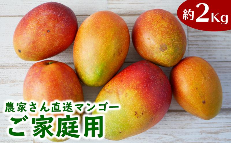 ご家庭用!濃密マンゴー《家庭用・2Kg》【2022年発送】農家さんより直送!