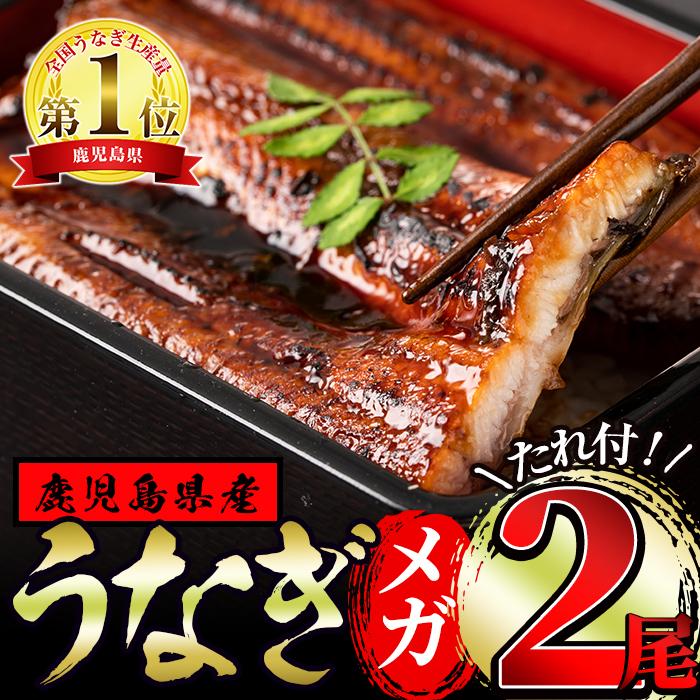 【18838】東串良町のうなぎ蒲焼メガサイズ(270g以上×2尾・タレ付)【アクアおおすみ】