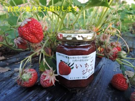 E1700自然栽培の「いちごジャム」2個セット