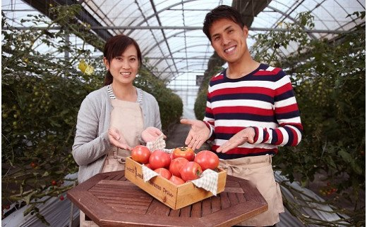 【2022年予約 お試し】たった3ヶ月しか食べられない 幻のファーストトマト H004-058