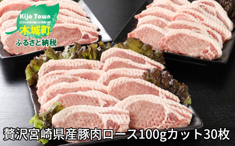 K16_0018 <贅沢宮崎県産豚肉ロース100gカット30枚>