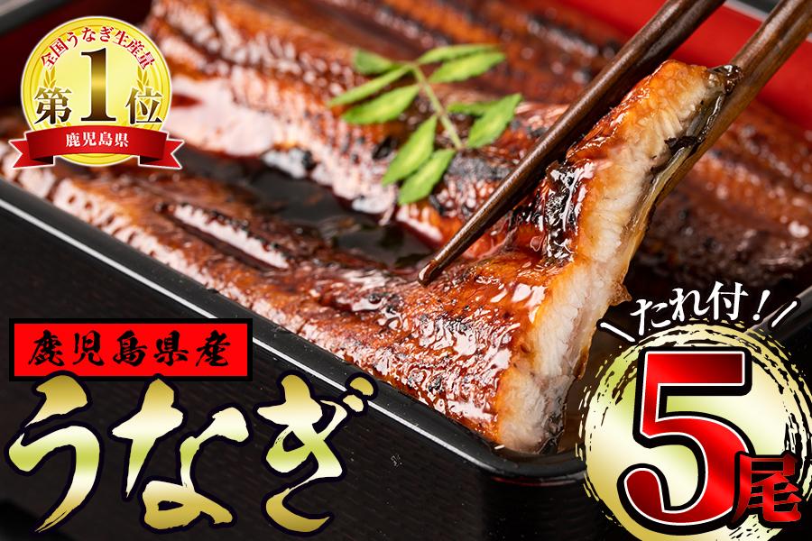 【24741】東串良町のうなぎ蒲焼(無頭)(150g以上×5尾・タレ、山椒付)【アクアおおすみ】