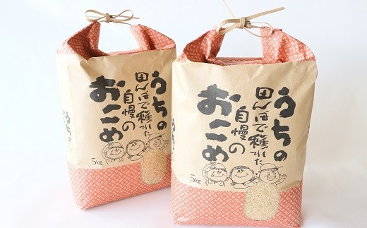 TA9-16 【今だけ限定!】特別栽培米ひとめぼれ10㎏