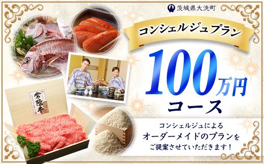 ZZ003_【提案型】あなただけのコンシェルジュプラン(100万円コース)