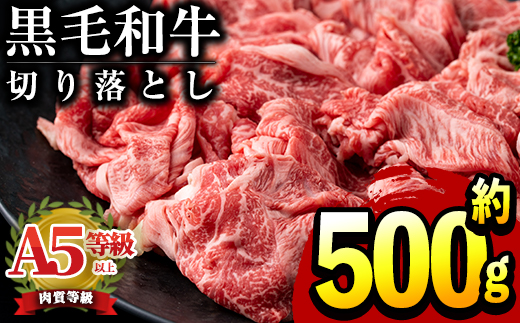 【12454】鹿児島県産黒毛和牛!A5等級切り落とし500g!バランスの良い国産の霜降り牛肉!【前田畜産たかしや】
