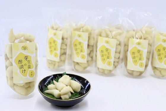 芽生姜の甘酢漬け 10パック