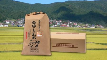2-11A 令和2年産  コシヒカリ「金崎さんちのお米 玄米」30㎏